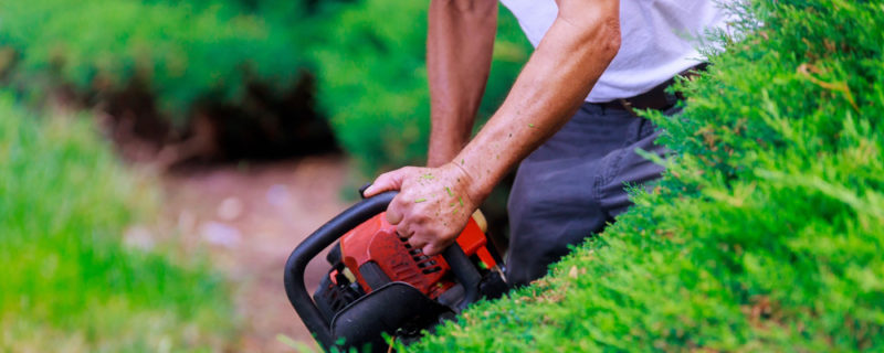 Professional gardner dressed with safety overalls using trimmer